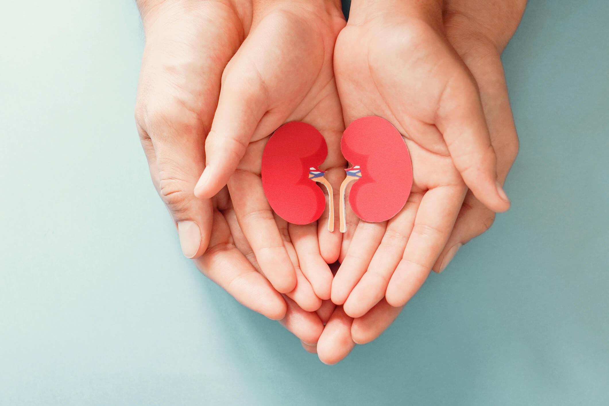 Kinderurologie und Nierentransplantation bei Kindern - Titelbild